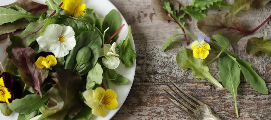 Flores comestibles: del jardín a tu mesa